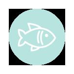 Peix-Fresc